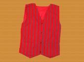 Men's Vest 06